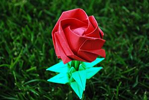 роза обычное оригами