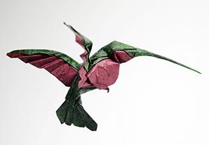 коллибри мокрый вид оригами