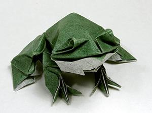 Мокрое оригами лягушка